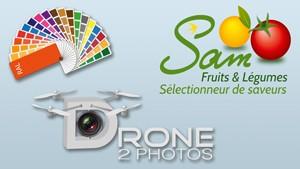 Photo représentant des logos et illustrations et servant de bouton pour accéder à la partie catalogues du site